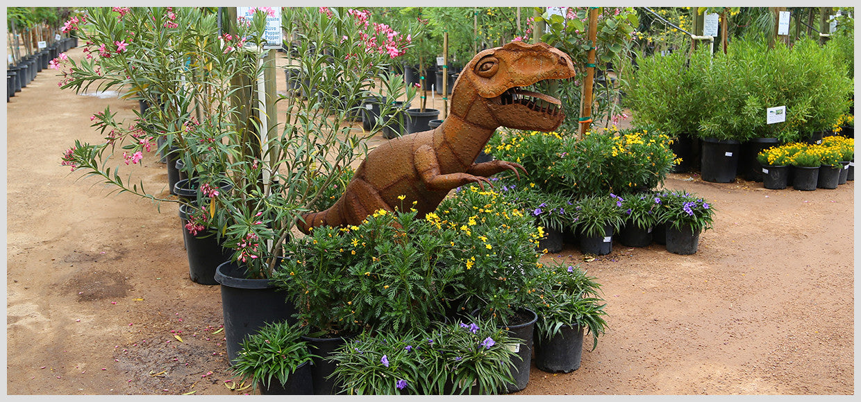 Desert Horizon Nursery Metal Allosaurus