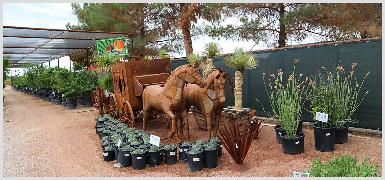 Desert Horizon Nursery Shade Panel and Metal Horse-Drawn Carriage