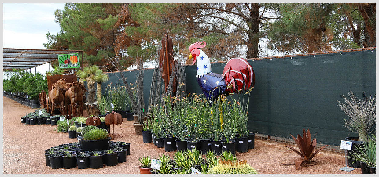 Desert Horizon Nursery Shade Panel and Metal Rooster