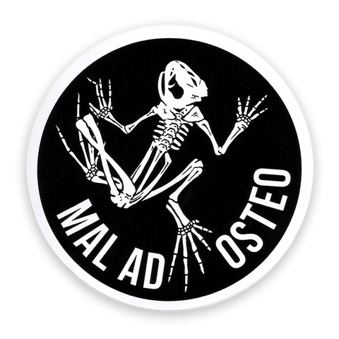 Bone Frog Sticker/Decal