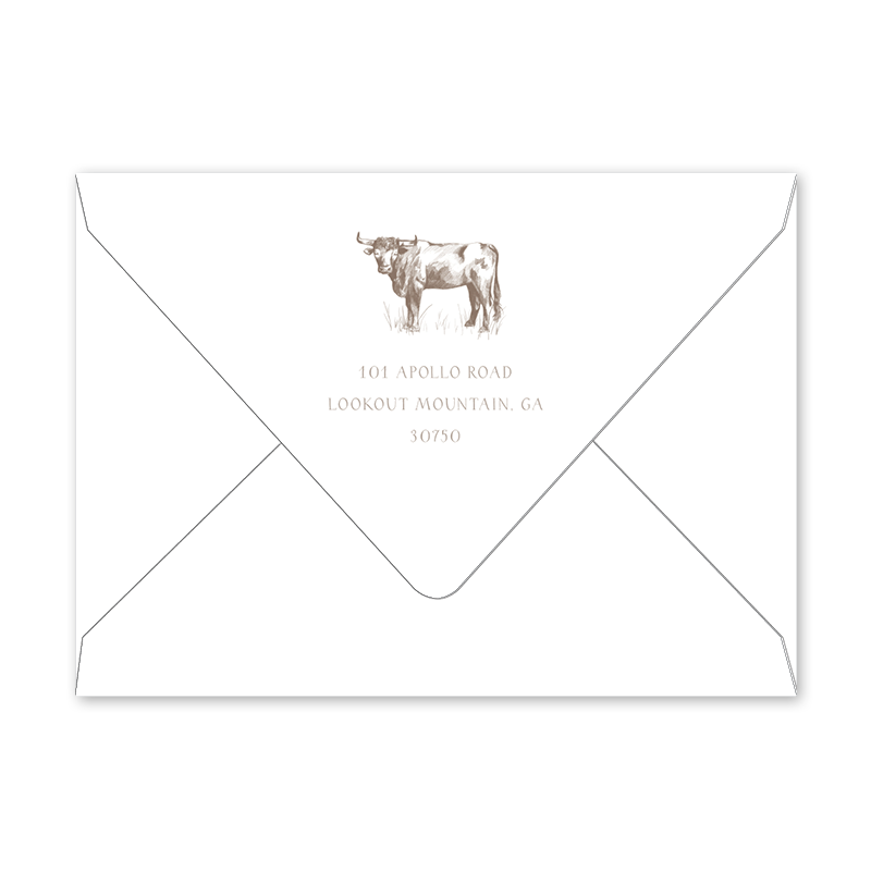 Bambini Bull Birth Announcement Envelopes