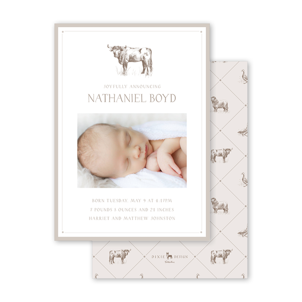 Bambini Bull Birth Announcement