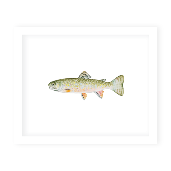 Fly Fishing Brook Trout Art Print