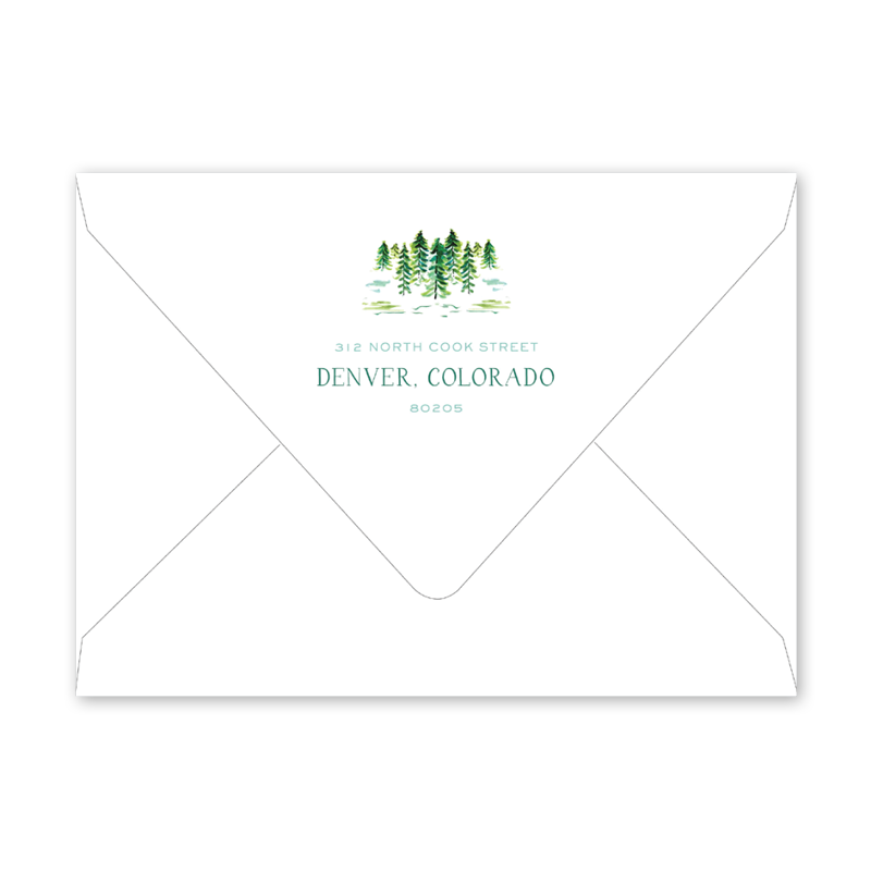 Safari Snow Scene Christmas Invitation Envelopes