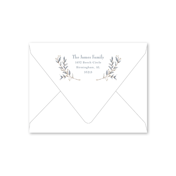 Blue Border Birth Announcement Envelopes