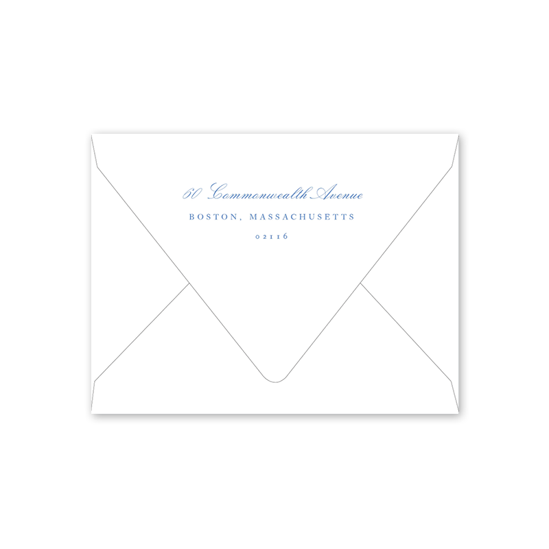 Dash Topiary and Toile Moving Announcement Envelopes