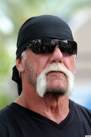 Hulk Hogan Beard