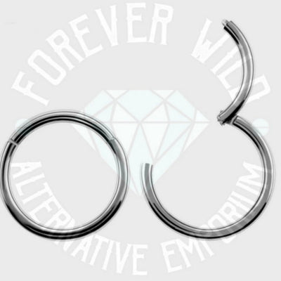 Hinged Segment Ring ↠ Silver