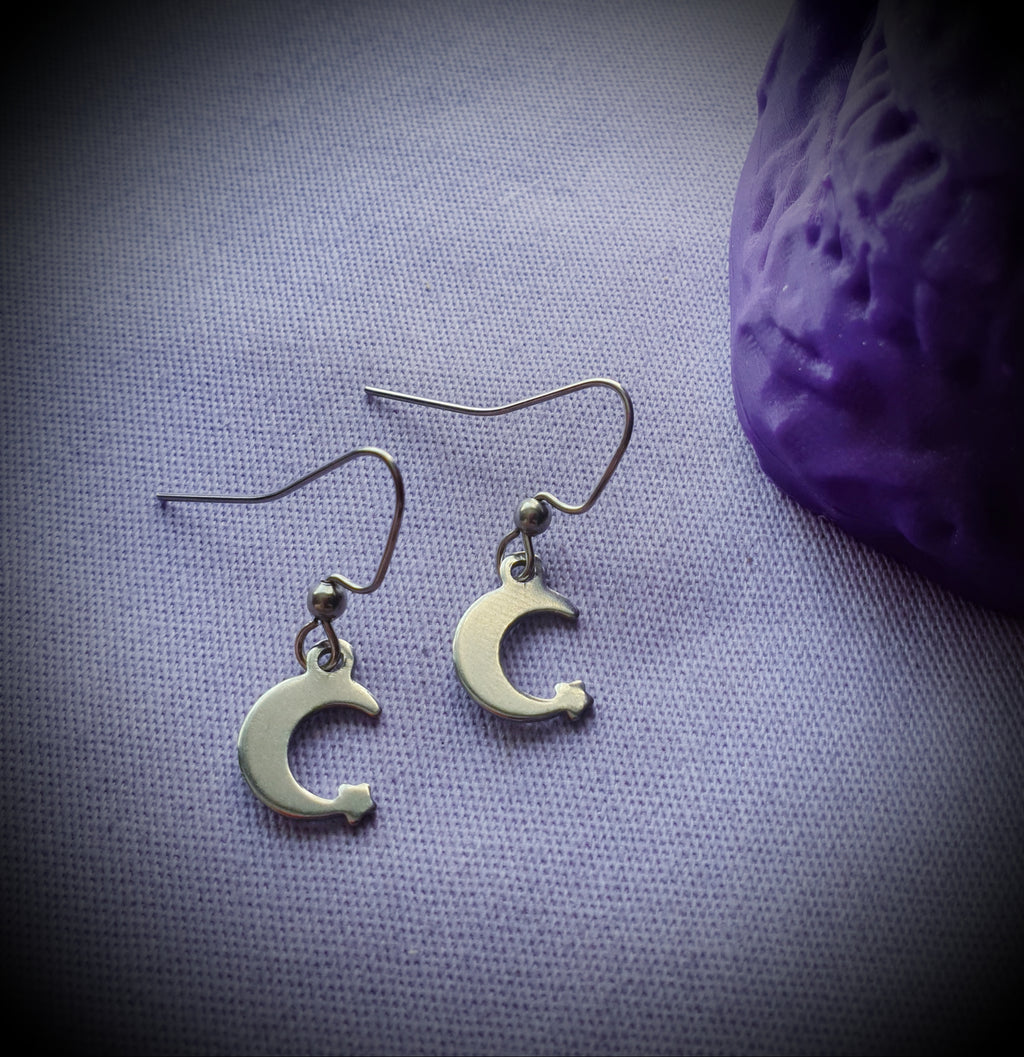 Crescent Moon Star Steel Earrings