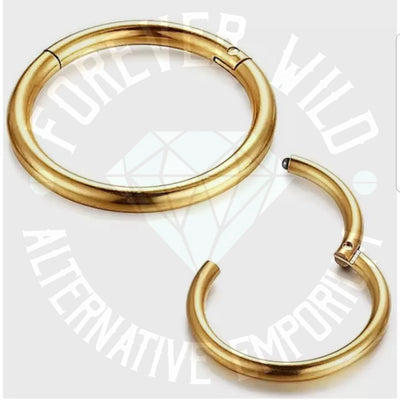 Hinged Segment Ring ↠ Gold