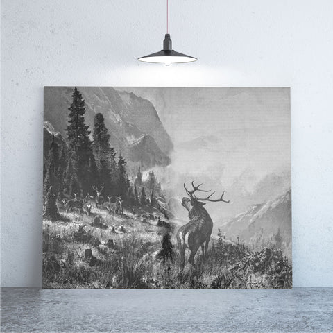 Deer In The Valley Art Print