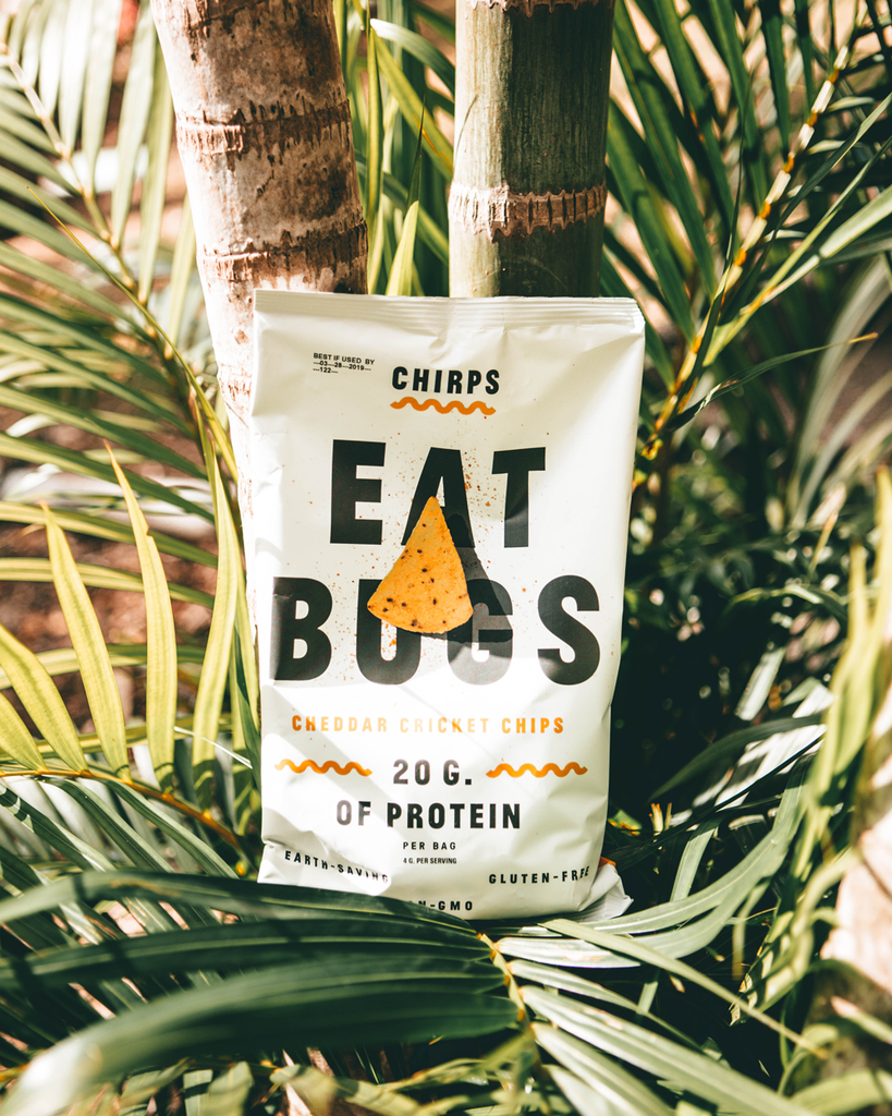 Cheddar Chirps Cricket Protein Chips
