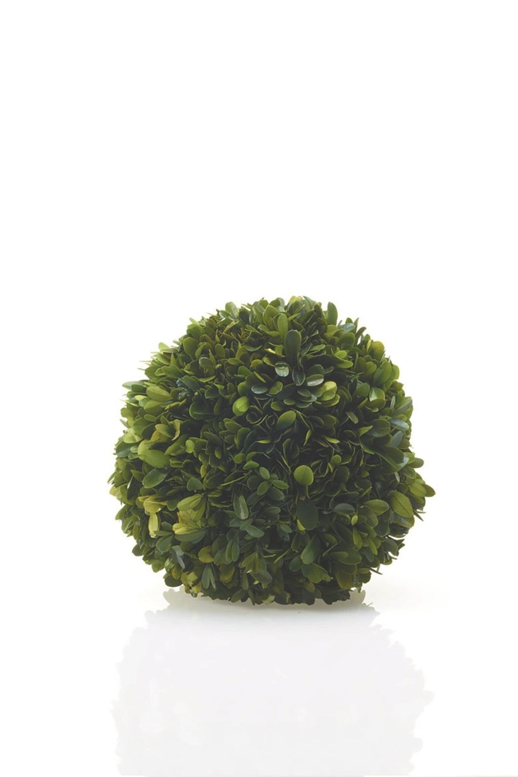 Boxwood Sphere