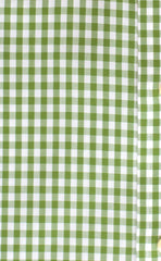 Classic Fit Green Gingham Button-Down Collar Supima® Non-Iron Cotton Broadcloth Sport Shirt (B/T)