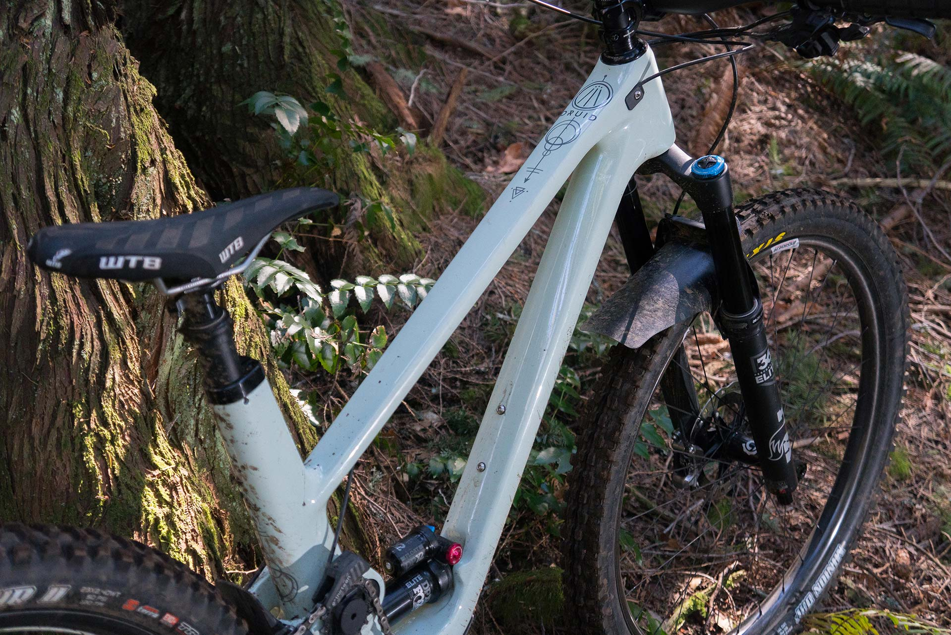 The Forbidden Druid high single pivot 29'er, out of Cumberland, BC