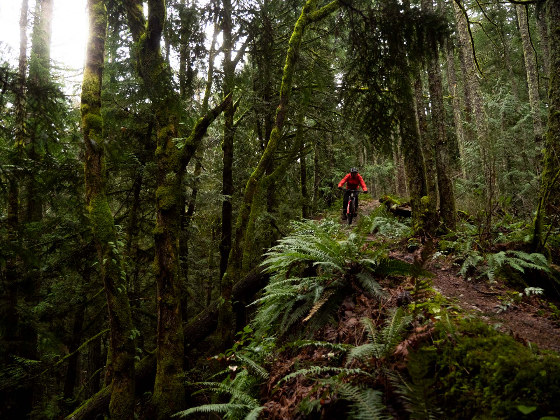 Rich, floating above the forest floor on the Ripmo's DW-link V-5 suspension.