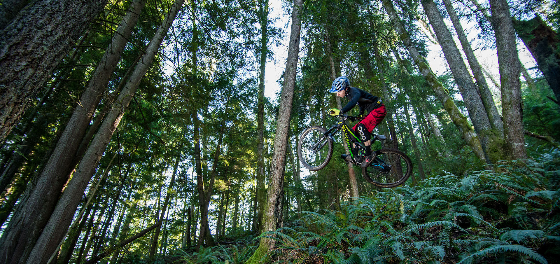 2015 Devinci Spartan Review