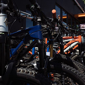 Mountain Bike Rentals from Ibis, Specialized, Forbidden, and Revel