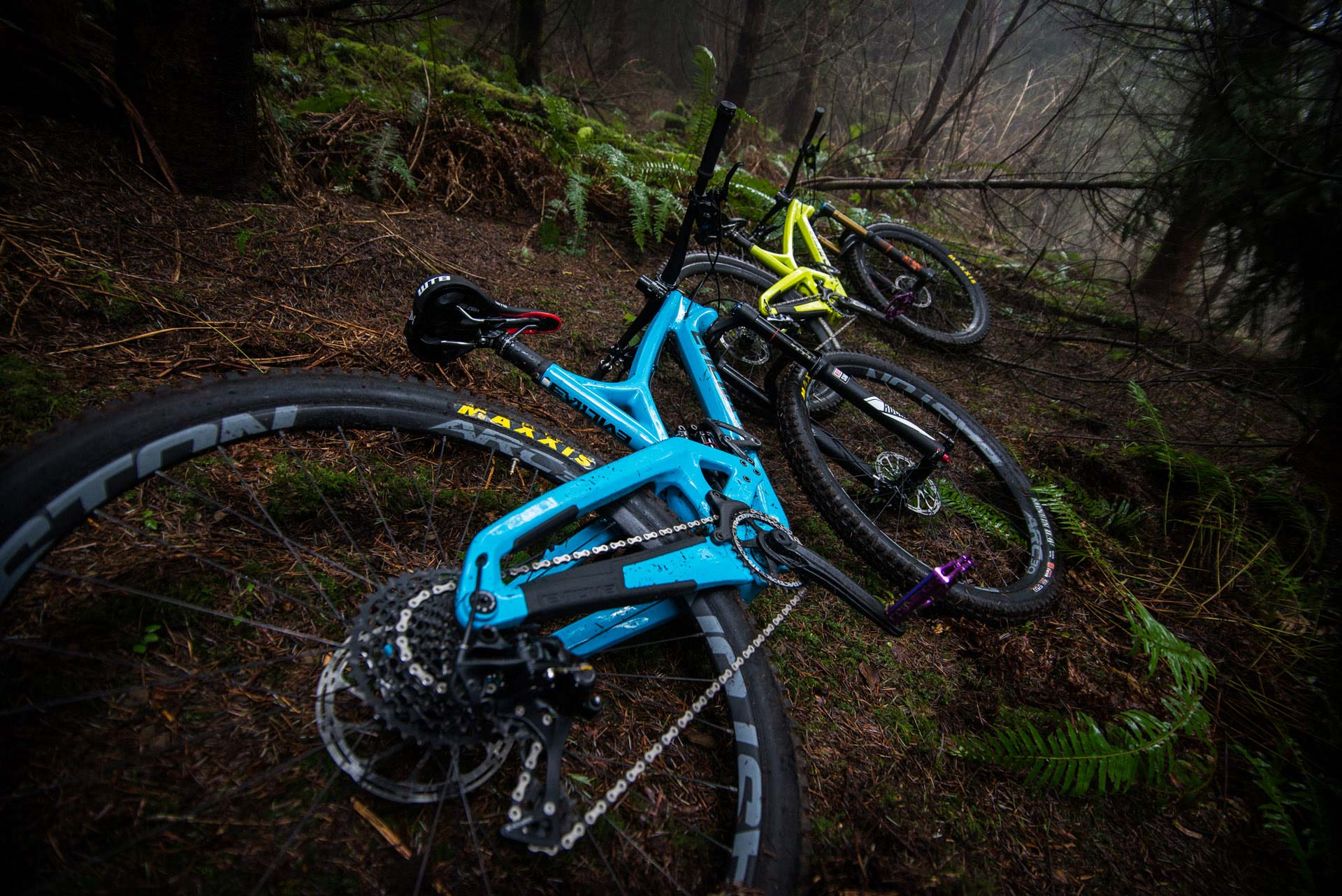 The Wreckoning in Megaladon Blue and the Insurgent in Slimeball Yellow, lounging in their natural habitat.