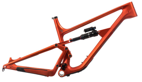 Rail Carbon Frame - 2021