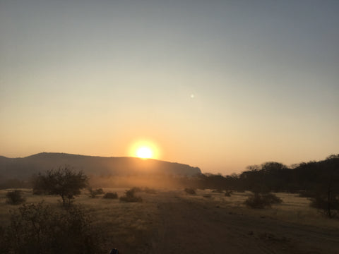 Ranthambore National Park India Safari sunset yoga