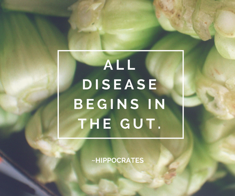 Gut Health Disease starts in the gut Hippocrates