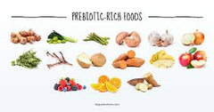 prebiotic rich foods