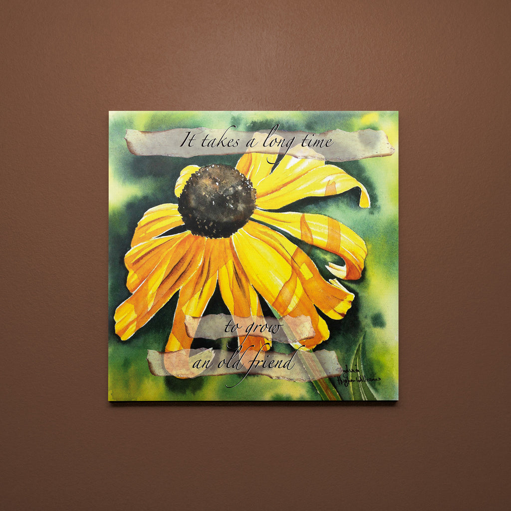 C044 - Rudbeccia - Old Friend