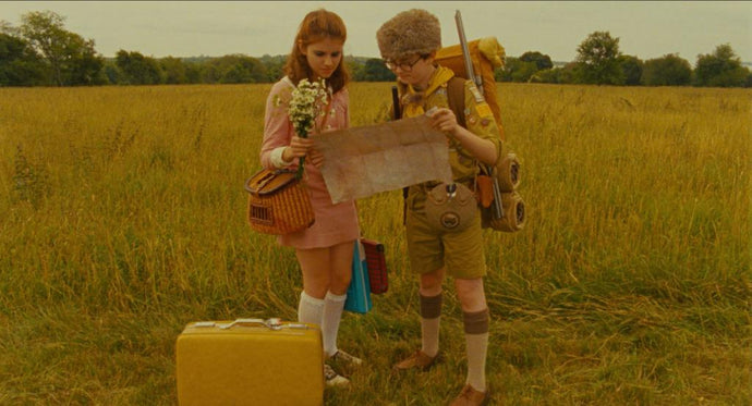 Movie Inspirations: Wes Anderson Palette