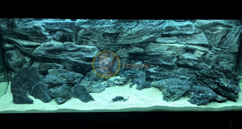 Image of Jungle Bob 3D Aquarium Background 48x21 Inch For 55/75 Gallon Rock Grey 7879
