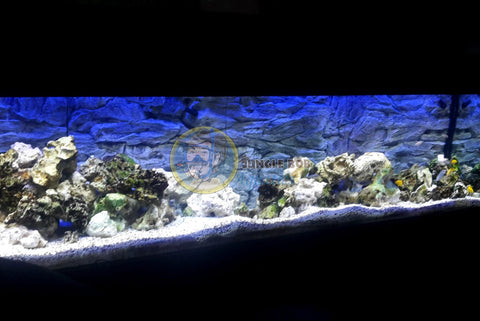 Jungle Bob 3D Aquarium Background 36x19 Inch For Aquarium 38/50 Gallon Rock Grey 7875