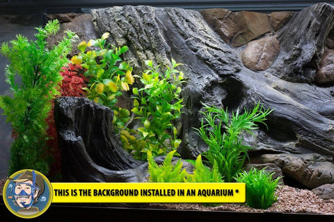 Image of Jungle Bob 3D Aquarium Background 36x25 Inch For 65 Gallon 7865 Amazon