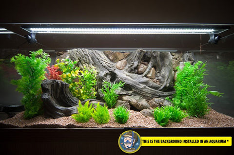 Image of Jungle Bob 3D  Background For Aquarium 30x18 Inch 29 Gallon Amazon 7855