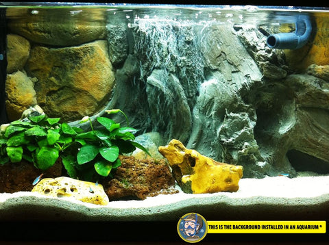 Image of Jungle Bob 3D Aquarium Background 20x12 Inch For 10 Gallon Amazon 7892