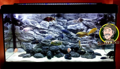 Jungle Bob Background 30x12 Inch For Aquarium 20 Gallon Long Rock Grey 7890