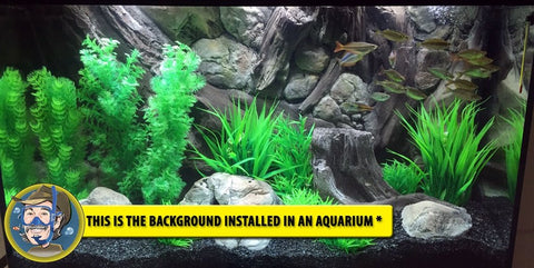 Jungle Bob 3D Aquarium Background 36x25 Inch For 65 Gallon 7865 Amazon