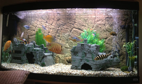 Jungle Bob 3D Aquarium Background 36x17 Inch For 40 Gallon Thin Beige 7793