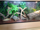 Jungle Bob 3D Aquarium Background 36X23 Inch For 45 Gallon Thin Beige 7815