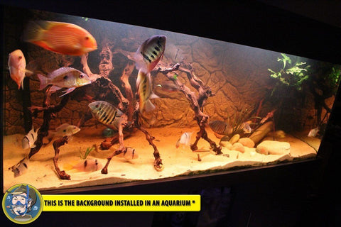 Image of Jungle Bob 3D Aquarium Background 72x29 Inch For 150/210 Gallon 7804 Thin Beige