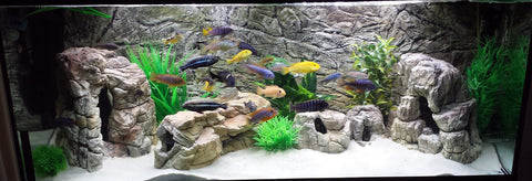 Jungle Bob 3D Aquarium Background 20x12 Inch For  Aquarium 10 Gallon Rock Grey 7840