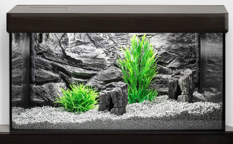 Jungle Bob 3D Aquarium Background 12x8 Inch For Aquarium 2.5 Gallon Rock Grey 7837