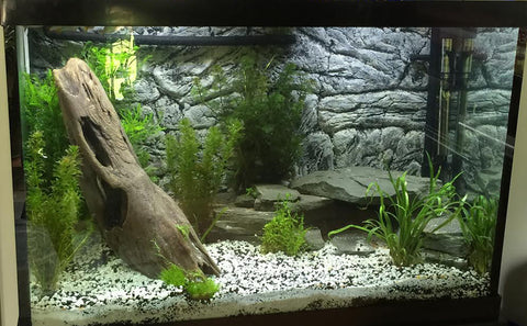 Image of Jungle Bob 3D Aquarium Background 30X21 Inch For 37 Gallon Thin Grey 8296