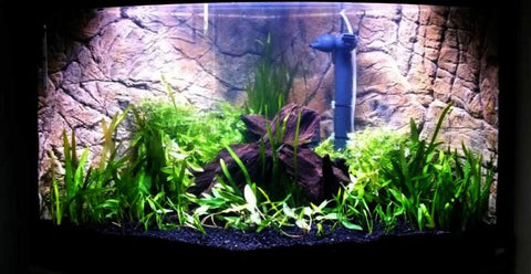 Jungle Bob 3D Aquarium Background 48x21 Inch For 55/75 Gallon Thin Beige 7797