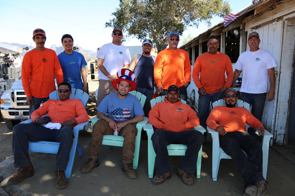 greenvale tree company crew