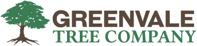 Greenvale Tree Company