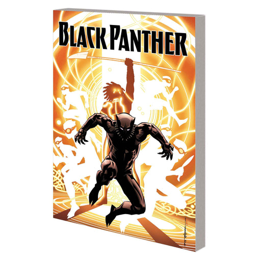 Georgetown Comics - BLACK PANTHER TP BOOK 02 NATION UNDER OUR FEET