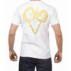 Taurus -  V neck t-shirt for him