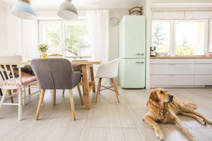 Dog-Friendly Flooring Options Every Dog Owner Should Know About