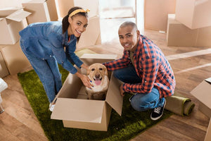 Top Tips for Moving With Your Pup