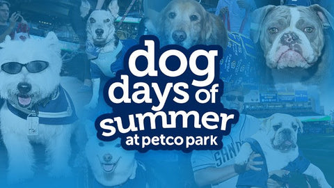 Dog Days of Summer at Petco Park